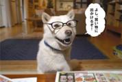 p01_kai-kun [XVÏ'Ý]