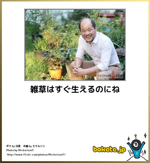 bokete(ボケて!)おもしろ画像集234