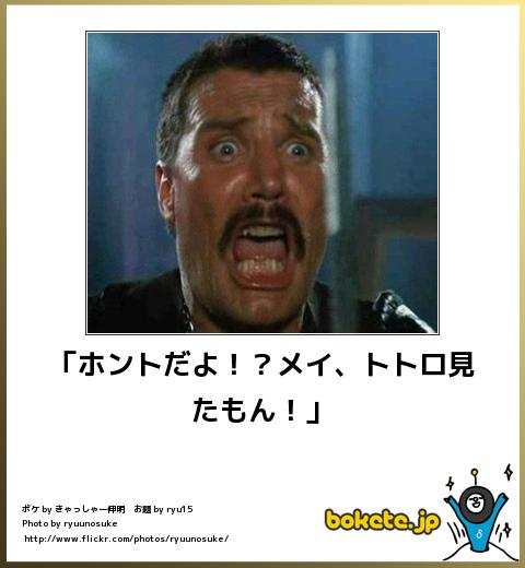 bokete(ボケて!)おもしろ画像集235