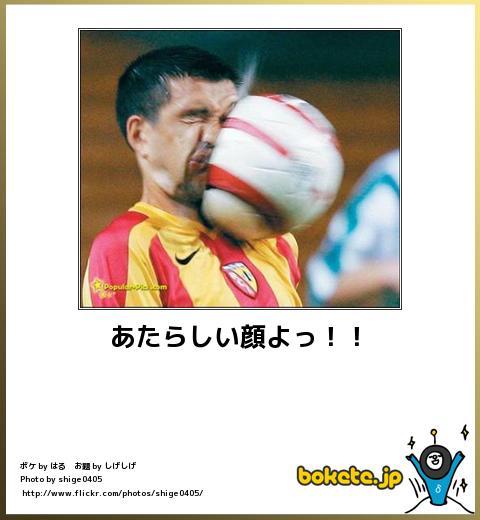 bokete(ボケて!)おもしろ画像集236