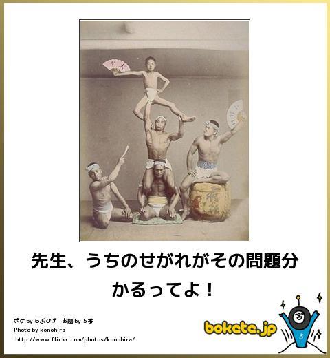 bokete(ボケて!)おもしろ画像集238