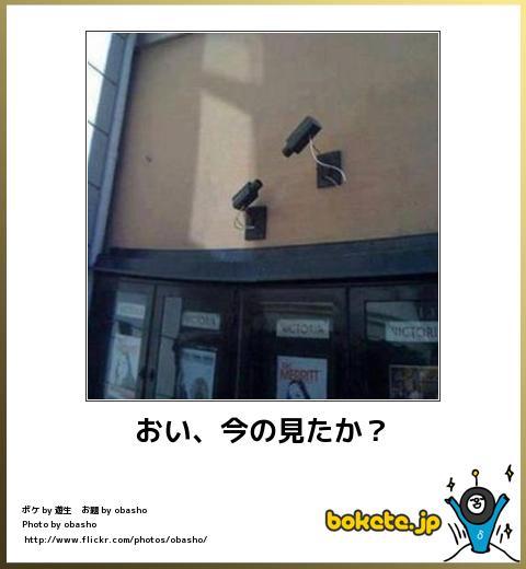 bokete(ボケて!)おもしろ画像集248