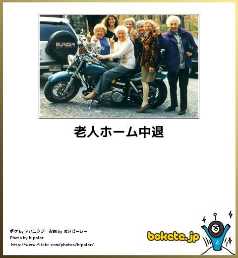 bokete(ボケて!)おもしろ画像集249