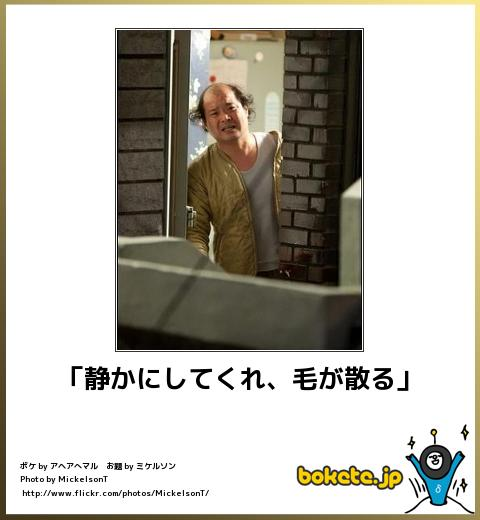 bokete(ボケて!)おもしろ画像集281