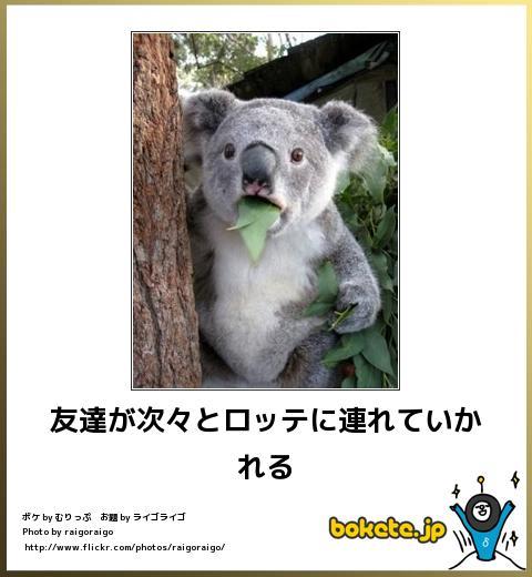 bokete(ボケて!)おもしろ画像集302
