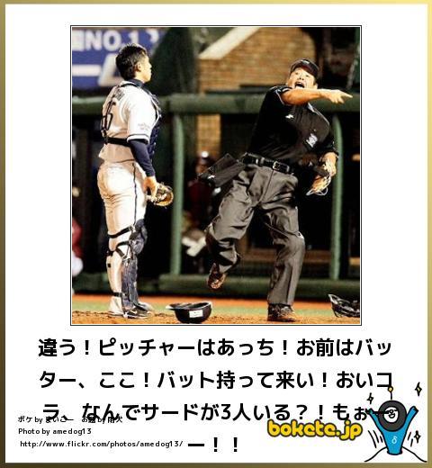 bokete(ボケて!)おもしろ画像集309