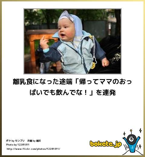 bokete(ボケて!)おもしろ画像集321