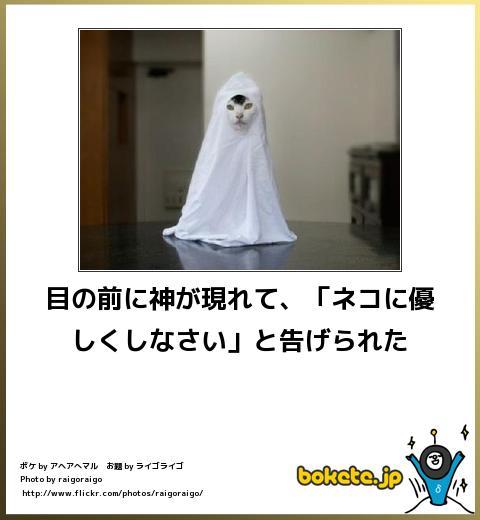 bokete(ボケて!)おもしろ画像集322