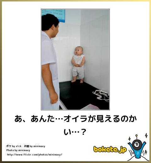 bokete(ボケて!)おもしろ画像集333