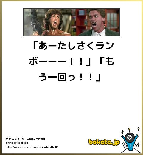 bokete(ボケて!)おもしろ画像集342
