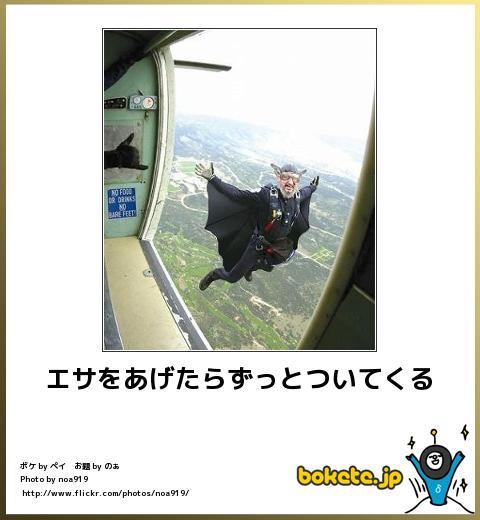 bokete(ボケて!)おもしろ画像集373