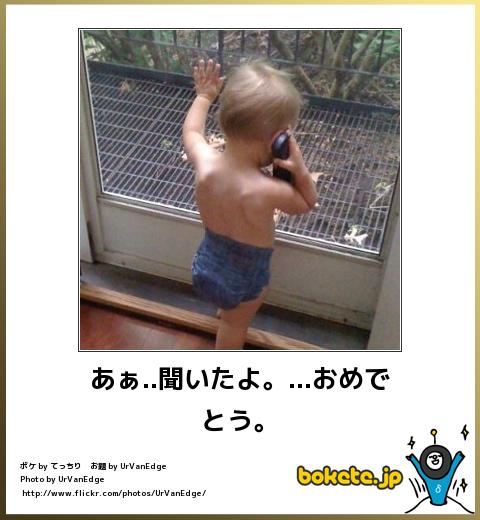 bokete(ボケて!)おもしろ画像集391