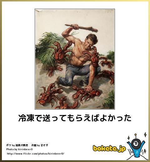 bokete(ボケて!)おもしろ画像集393