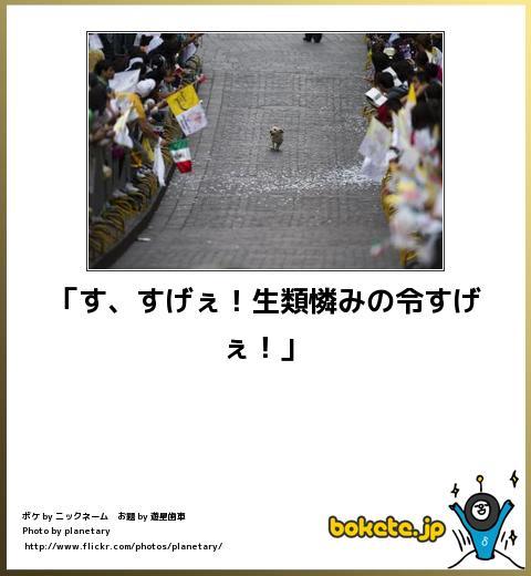 bokete(ボケて!)おもしろ画像集399