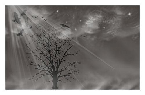 幻想的で、不思議な世界観のある写真画像まとめ55