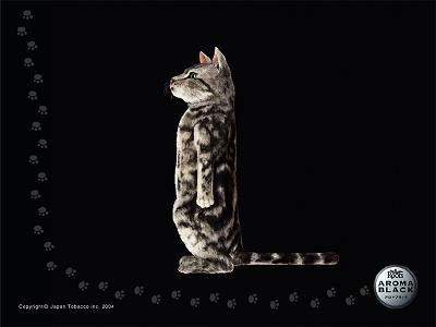 猫おもしろ118