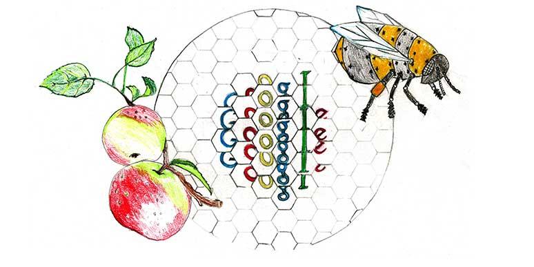 google logo20