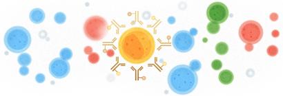 google logo291