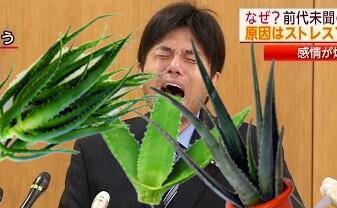 野々村竜太郎議員のコラ画像を集めてみた121