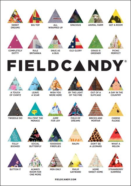 FIELD CANDY10