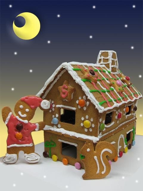 お菓子の家62480