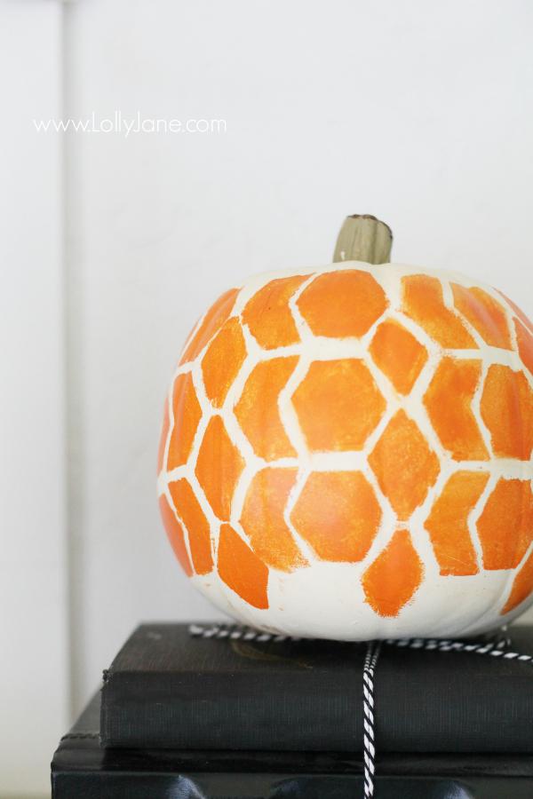 かぼちゃ24