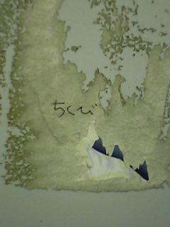 便所の落書き110