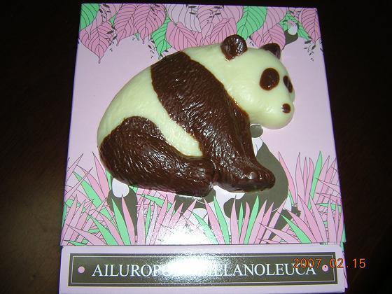 バレンタイン チョコレート41
