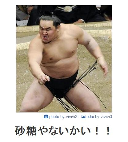 sumou6
