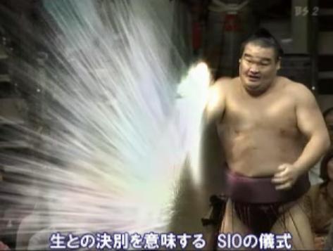 sumou9
