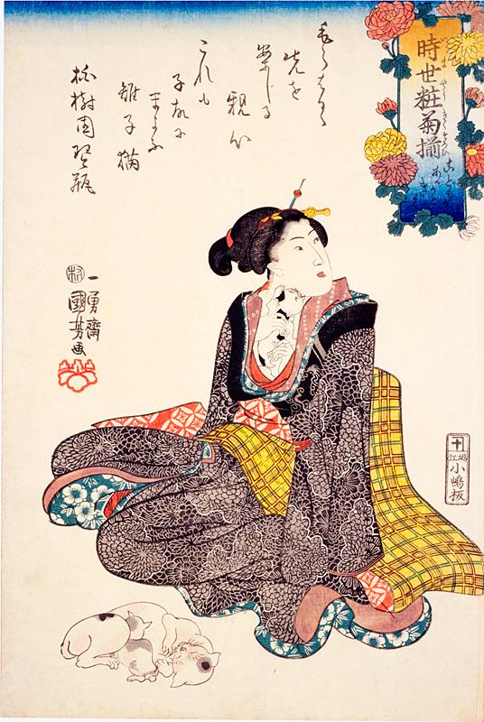 猫の浮世絵16