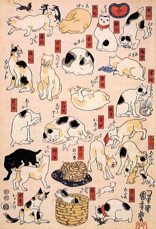 猫の浮世絵5