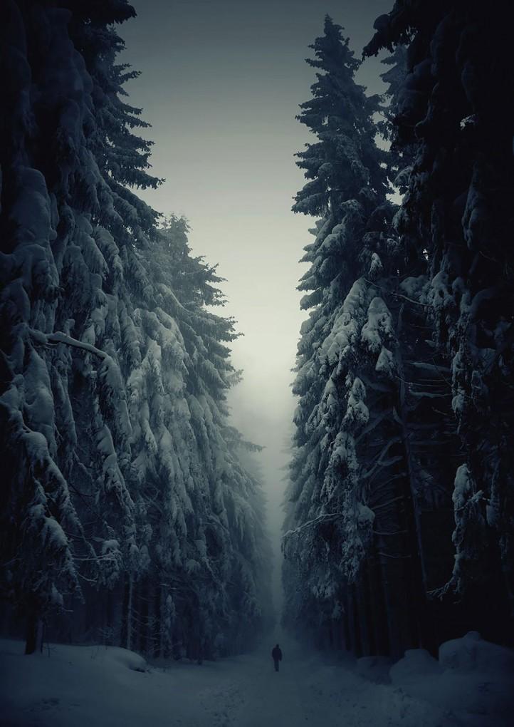 自然の絶景6