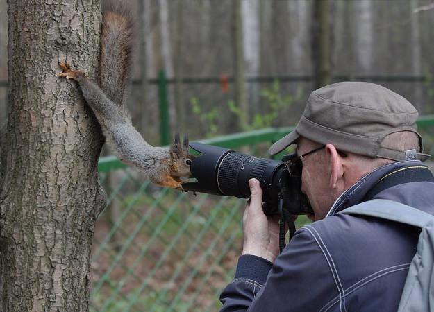カメラマンと仲良くなってしまった動物達4