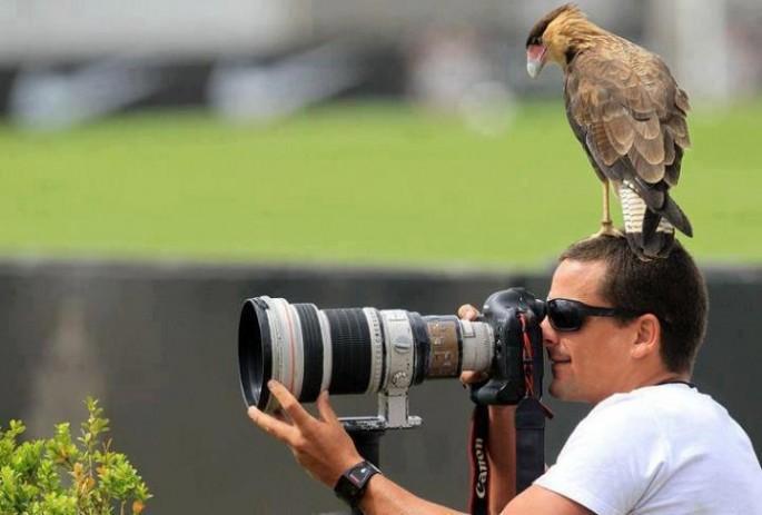 カメラマンと仲良くなってしまった動物達6