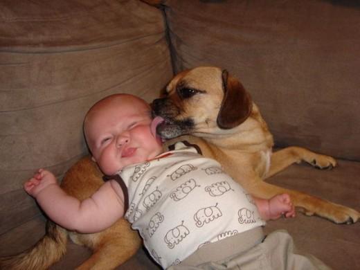 赤ちゃんと仲良し12