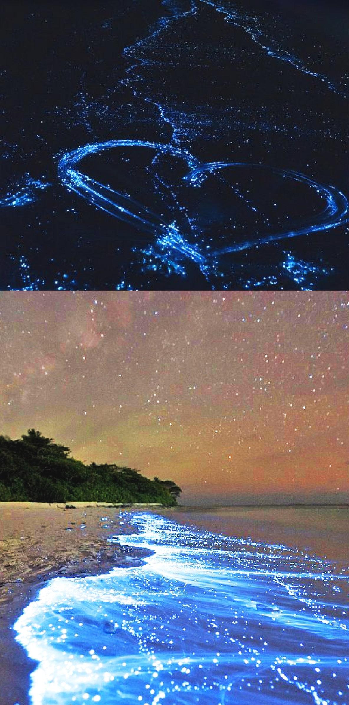 海のある絶景9