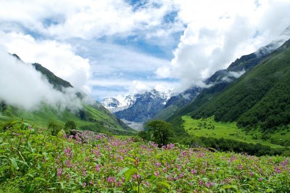 美しい自然5