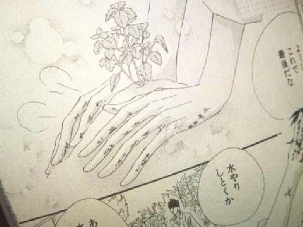 少女漫画33