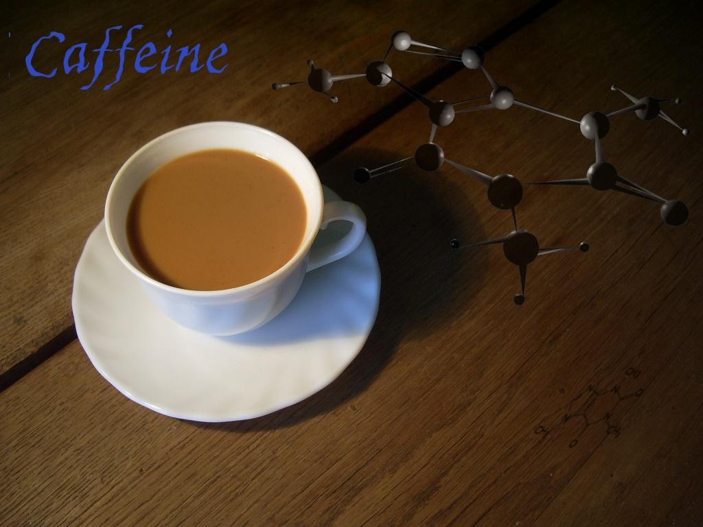 コーヒー120