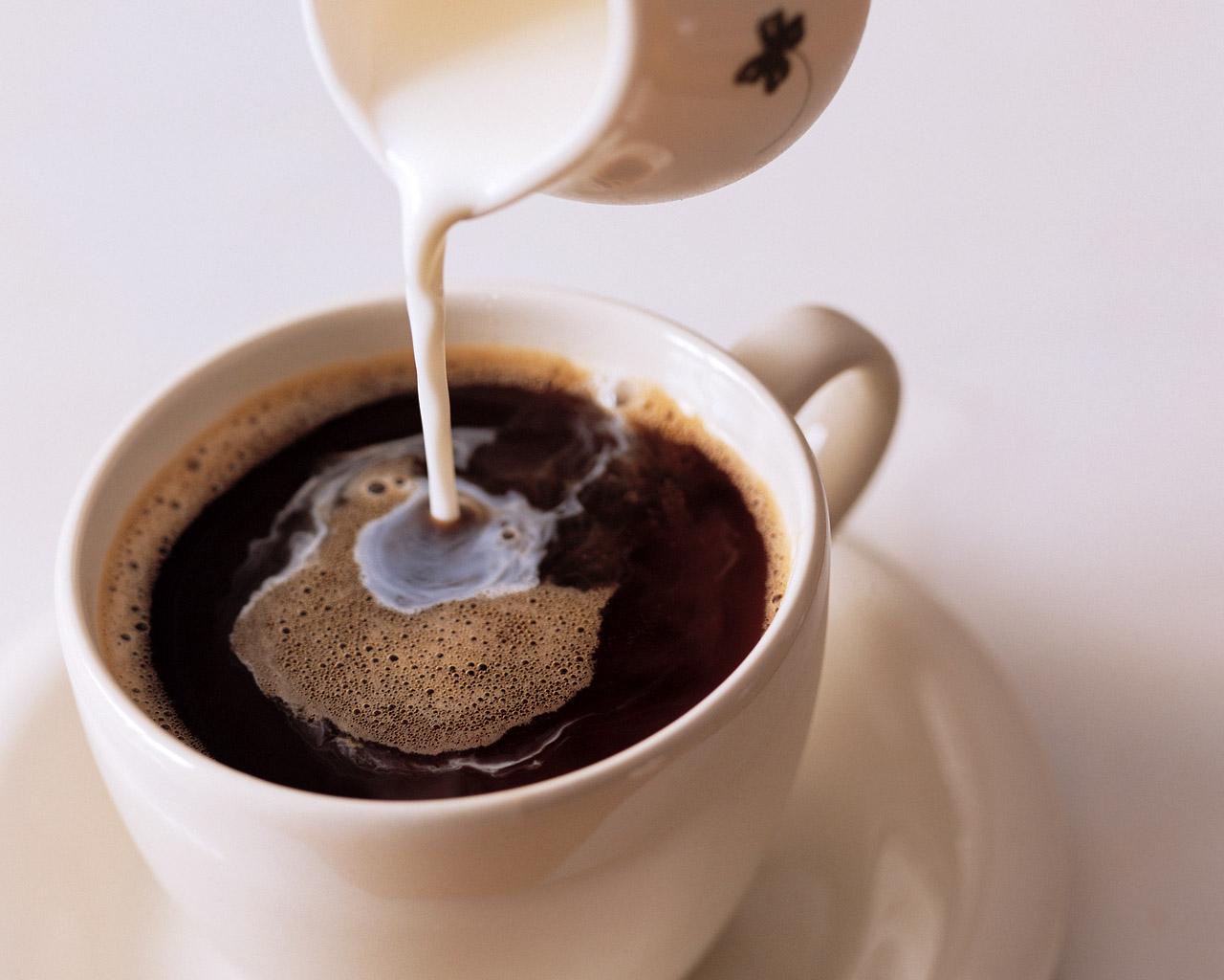 コーヒー141