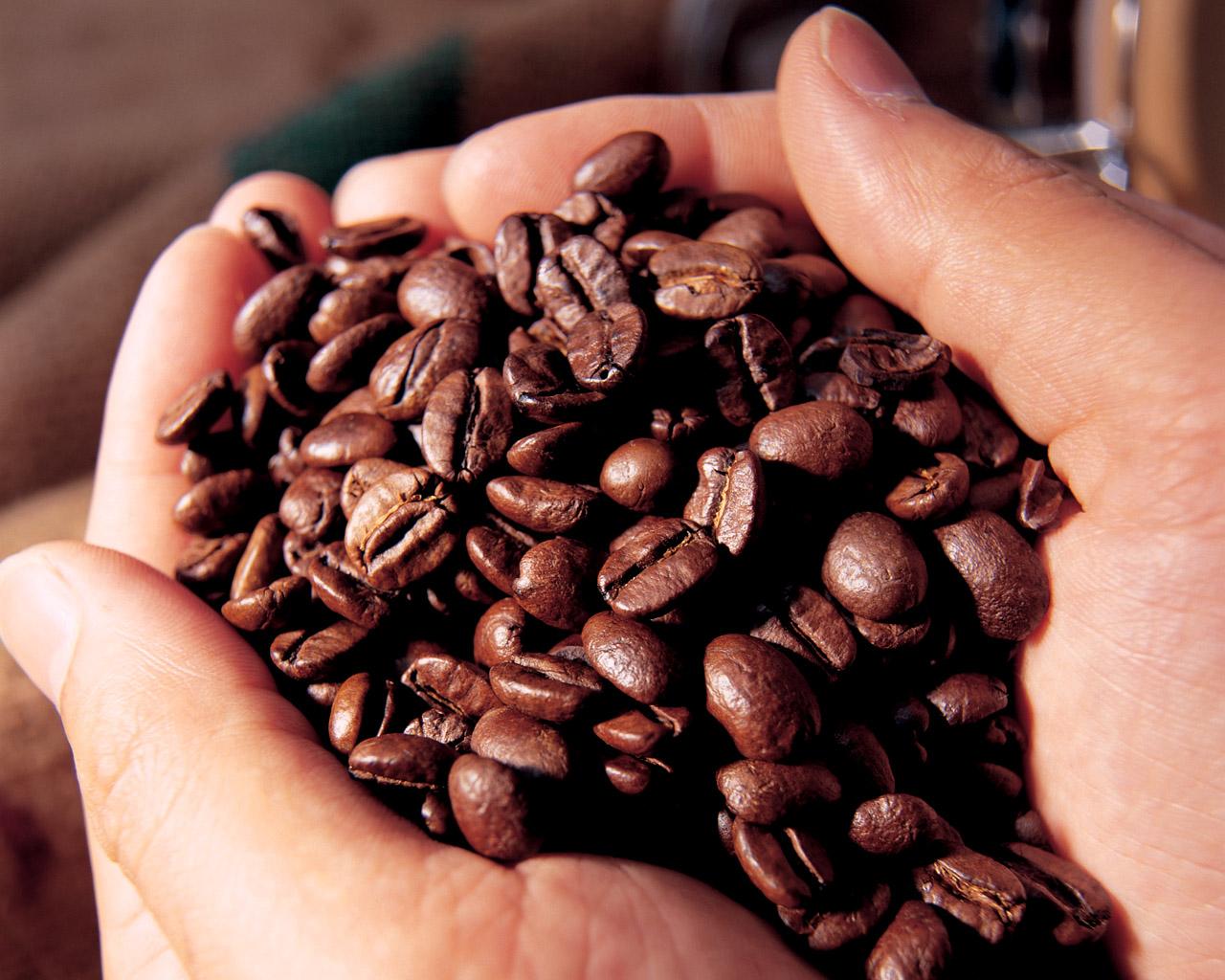 コーヒー150