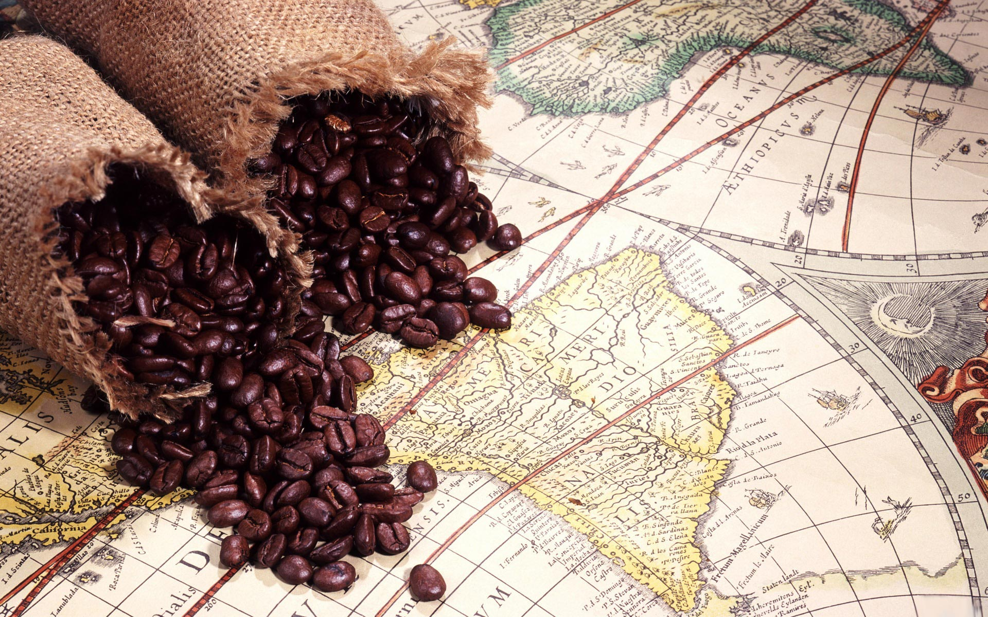 コーヒー53